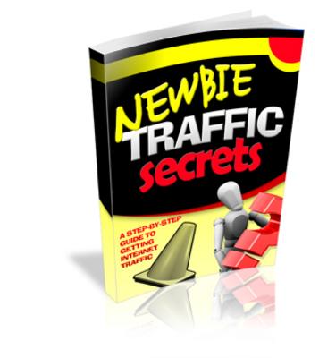 Product picture Newbie Traffic Secrets